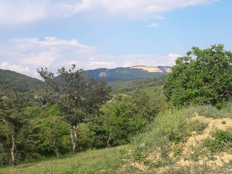 Naszály-hegység
