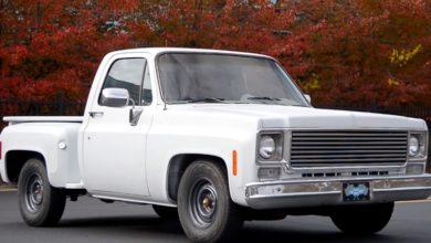 Photo of Chevrolet C10 (1978)