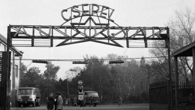 Photo of Csepel Autógyár – évfordulós kisfilm