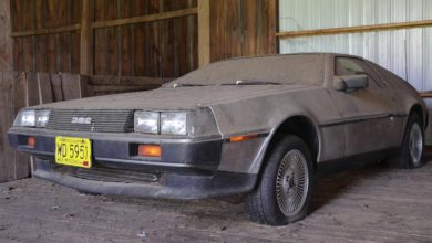 Photo of DeLorean – időkapszula a pajtában