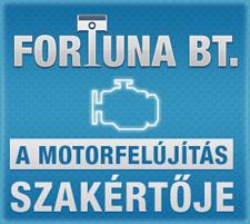 Fortuna Bt, a motorfelújítás szakértője