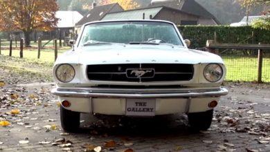 Photo of Ford Mustang – őszi hangulat